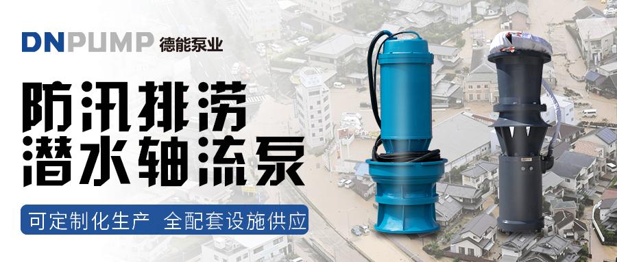 大型潜水泵 大口径潜水轴流泵 德能潜水轴流泵维修示例图1